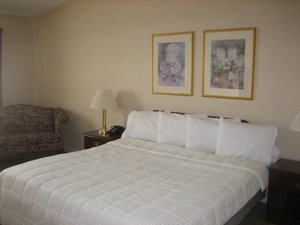 Room - Inn at Arbor Ridge Hotel & Conference Center Hopewell Junction
