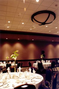 Meeting Facilities - Executive Airport Plaza Hotel Richmond