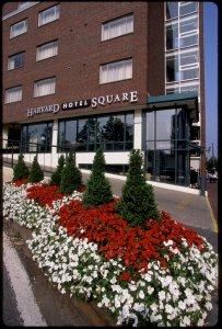 Exterior view - Harvard Square Hotel Cambridge
