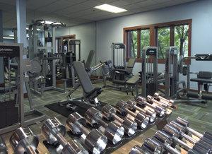Fitness/ Exercise Room - Eagle Ridge Inn & Resort Galena