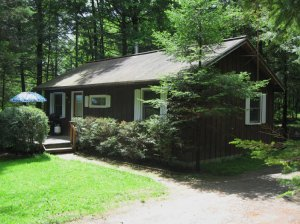 Exterior view - Stowe Cabins In the Woods Waterbury Center