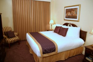 Room - Cook Hotel at LSU