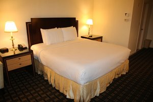 Room - Bedford Plaza Hotel