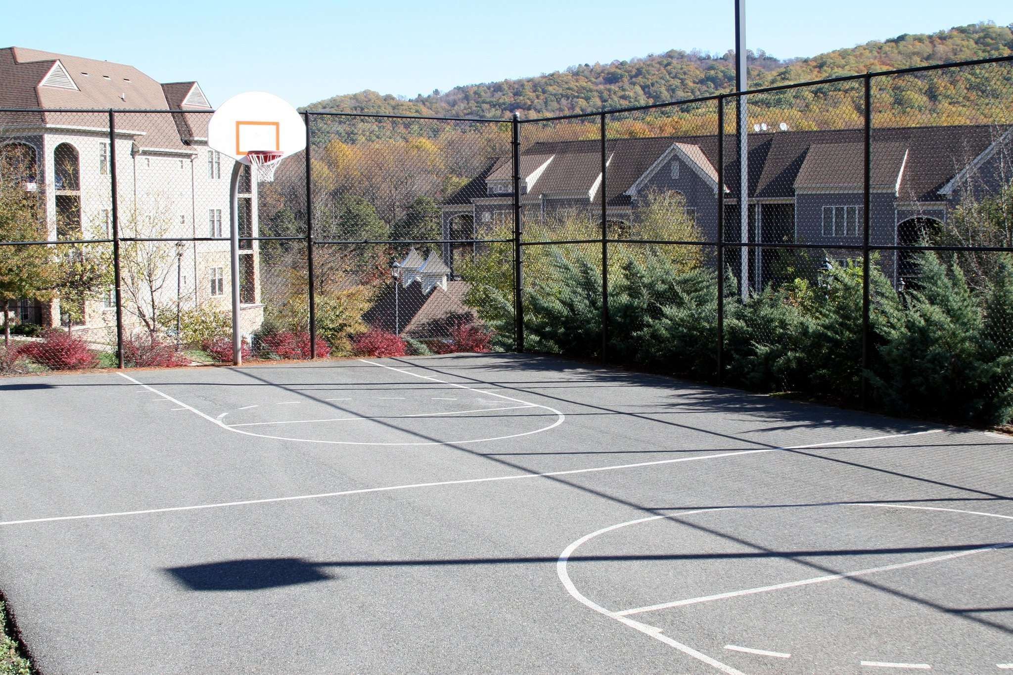 Charlottesville Furnished Apartment Basketball Cou