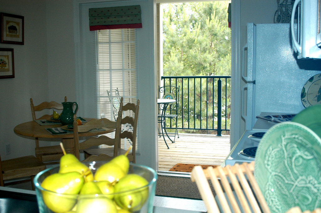 Williamsburg Furnished Apartment Balcony