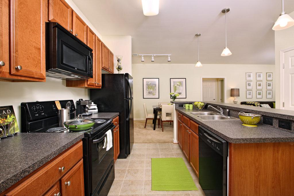 Petersburg Furnished Apartment Kitchen