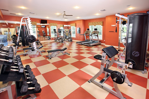 Petersburg Furnished Apartment Fitness Center