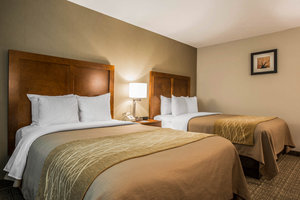 Room - Comfort Inn & Suites at Maplewood Montpelier