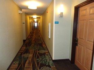 Lobby - Staybridge Suites Lone Tree