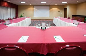 Meeting Facilities - Holiday Inn Hotel & Suites Rothschild