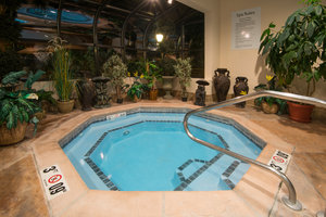 Pool - Holiday Inn Express West Middlesex