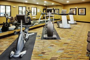 Fitness/ Exercise Room - Holiday Inn Express Hotel & Suites Limerick