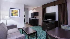 Suite - Holiday Inn Express Hotel & Suites Wyomissing