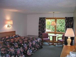 Room - T Bird Motor Inn Shelburne