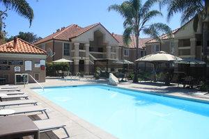 Pool - Staybridge Suites San Jose
