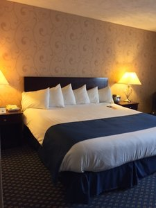 Room - Kensington Court Hotel Ann Arbor