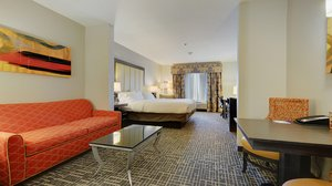 Room - Holiday Inn Express Hotel & Suites Gonzales