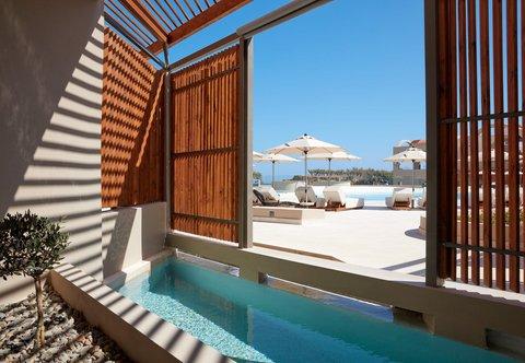 Guest Room - Plunge Pool