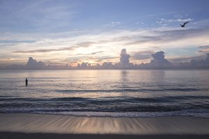 Beach - Ritz-Carlton Hotel South Beach Miami Beach