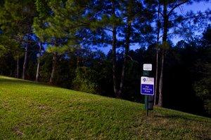 Lobby - Candlewood Suites Jacksonville