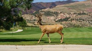 Exterior view - Garden of the Gods Club & Resort Colorado Springs