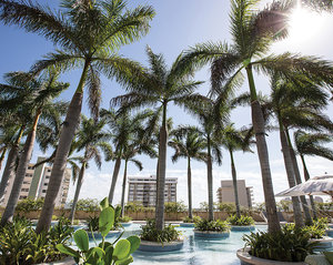 Pool - Four Seasons Hotel Miami