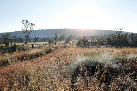 Shambala Game Reserve