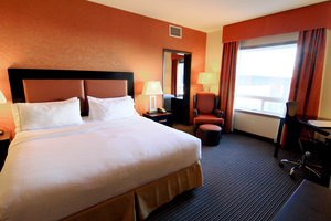 Room - Holiday Inn Express Hotel & Suites Airport Calgary