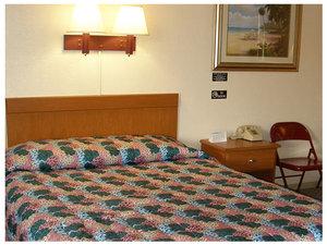 Room - Red Carpet Inn Daytona Beach
