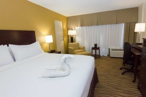 Room - Holiday Inn Airport Clearwater