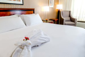 Room - DoubleTree by Hilton Hotel Las Vegas Airport