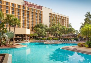 Pool - Marriott Hotel Airport Orlando