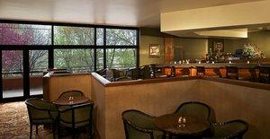 Bar - Sheraton Hotel Minnetonka