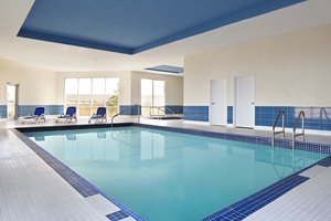 Pool - Four Points by Sheraton Hotel Edmonton
