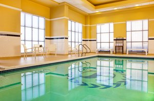 Pool - Sheraton Hotel BWI Airport Linthicum