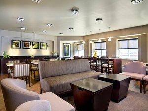 Bar - Sheraton Hotel Needham