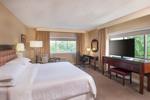 Room - Sheraton Hotel Framingham