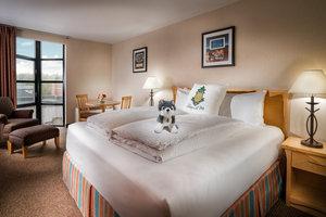 Room - Staypineapple University Inn Seattle