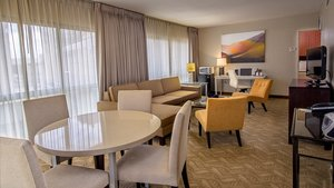 Room - Holiday Inn Downtown Rochester