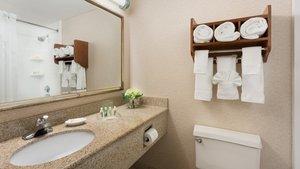 Room - Holiday Inn Brookline