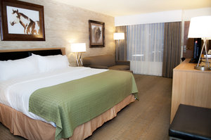 Room - Holiday Inn Convention Center Spearfish