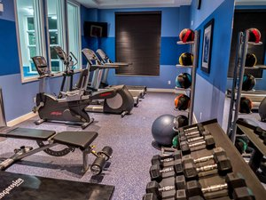Fitness/ Exercise Room - Holiday Inn Express Hotel & Suites Airport West Mississauga