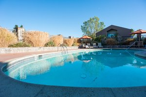 Pool - Hotel Indigo Napa Valley