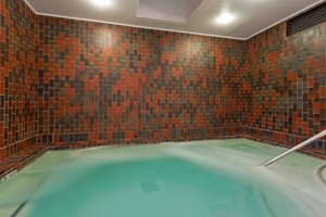 Pool - Holiday Inn Dublin
