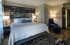 Room - Hotel Indigo Five Points Birmingham
