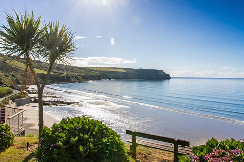 Carne Beach and Nare Head