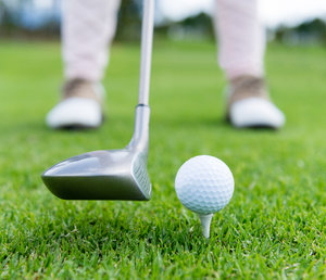 Golf - Holiday Inn Express Hotel & Suites Delmar