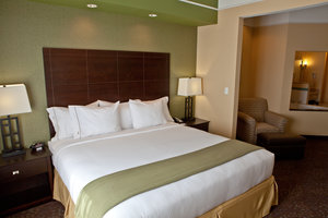 Suite - Holiday Inn Express Dimondale