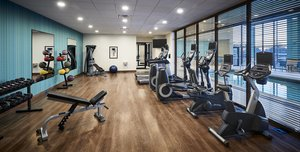 Fitness/ Exercise Room - Holiday Inn Express Hotel & Suites Niagara on the Lake