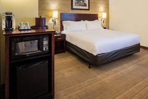 Room - Holiday Inn Hotel & Suites O'Hare Airport Rosemont